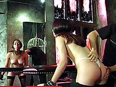 Daniela Harpaz BDSM Dungeon Slave Hardcore Ass Whipping