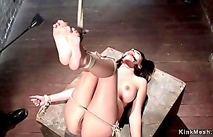 Busty tied up squirter fingered