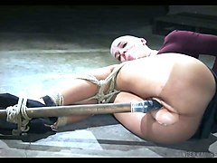 crazy bdsm video featuring bald headed porn model abigail dupree