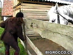 rocco fucks a bubble butt in front of horses